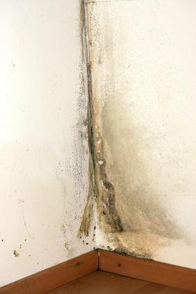 Top Feuchte Wände trockenlegen leicht gemacht - DieEinsparInfos.de VD19
